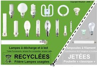 Recyclage lampes basses consommation